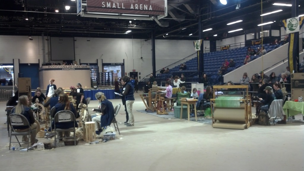 The 2014 youth Fleece to Shawl competition in the Small Arena of the Pennsylvania Farm Show complex.