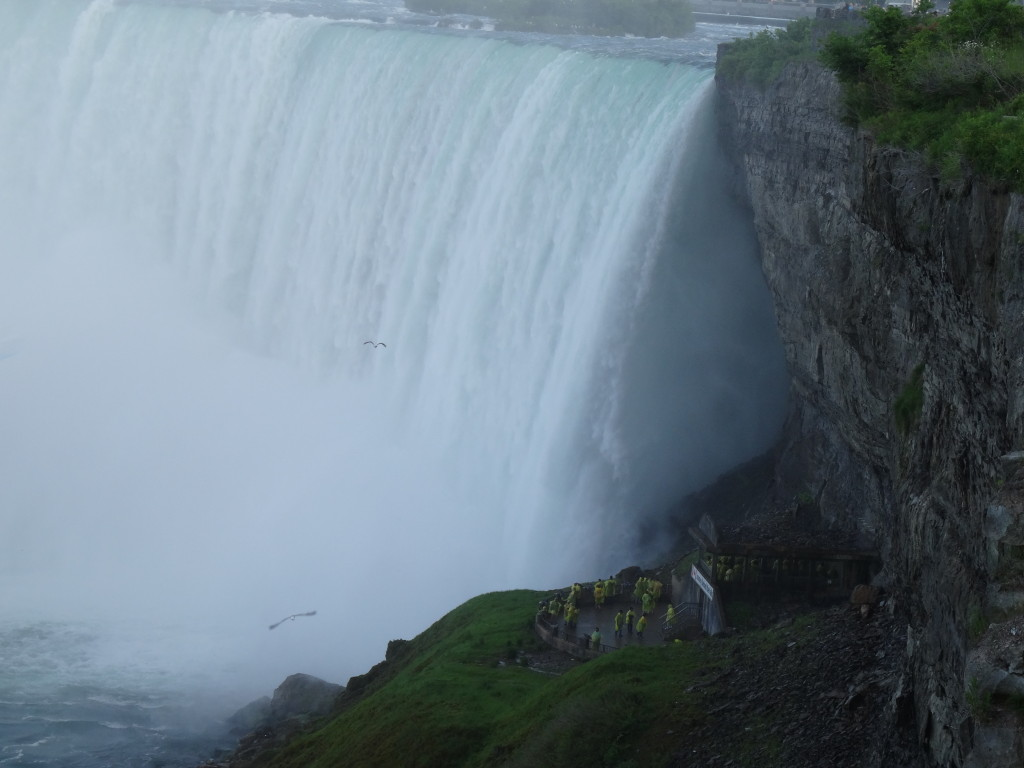 Niagara Falls I Western Sakiori